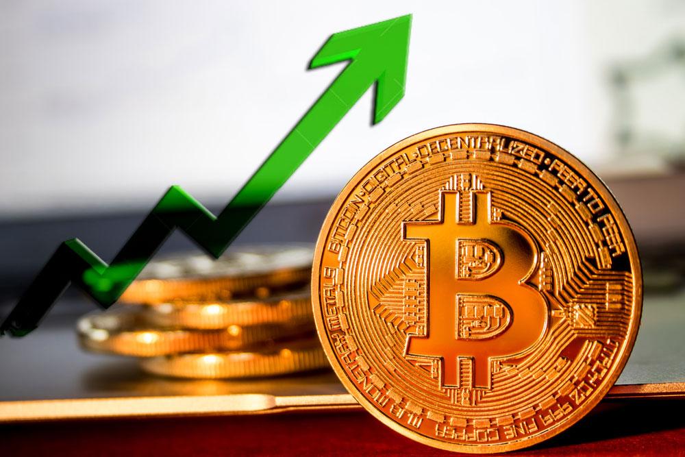 Майк Новограц: Биткоин будет стоить 25 тысяч долларов до августа следующего года
