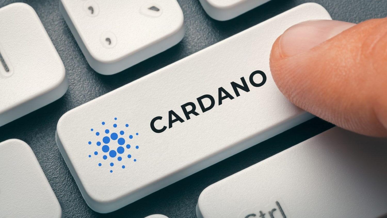 Команда Cardano работает над выпуском нового продукта