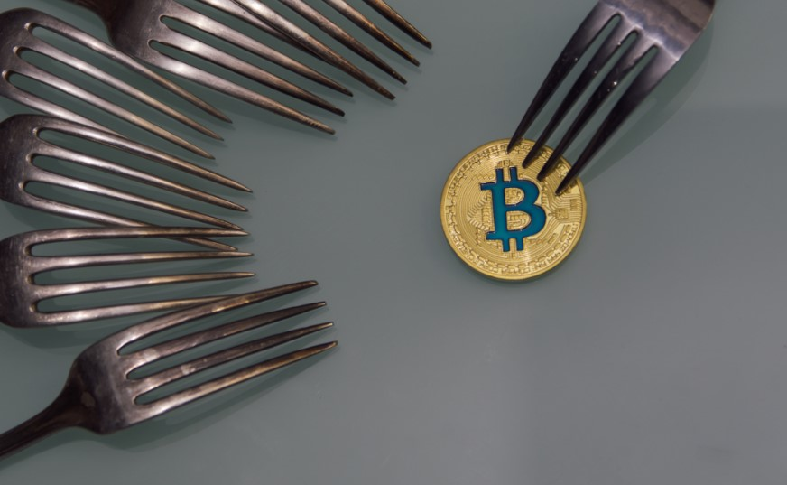 Hard Fork vs Soft Fork