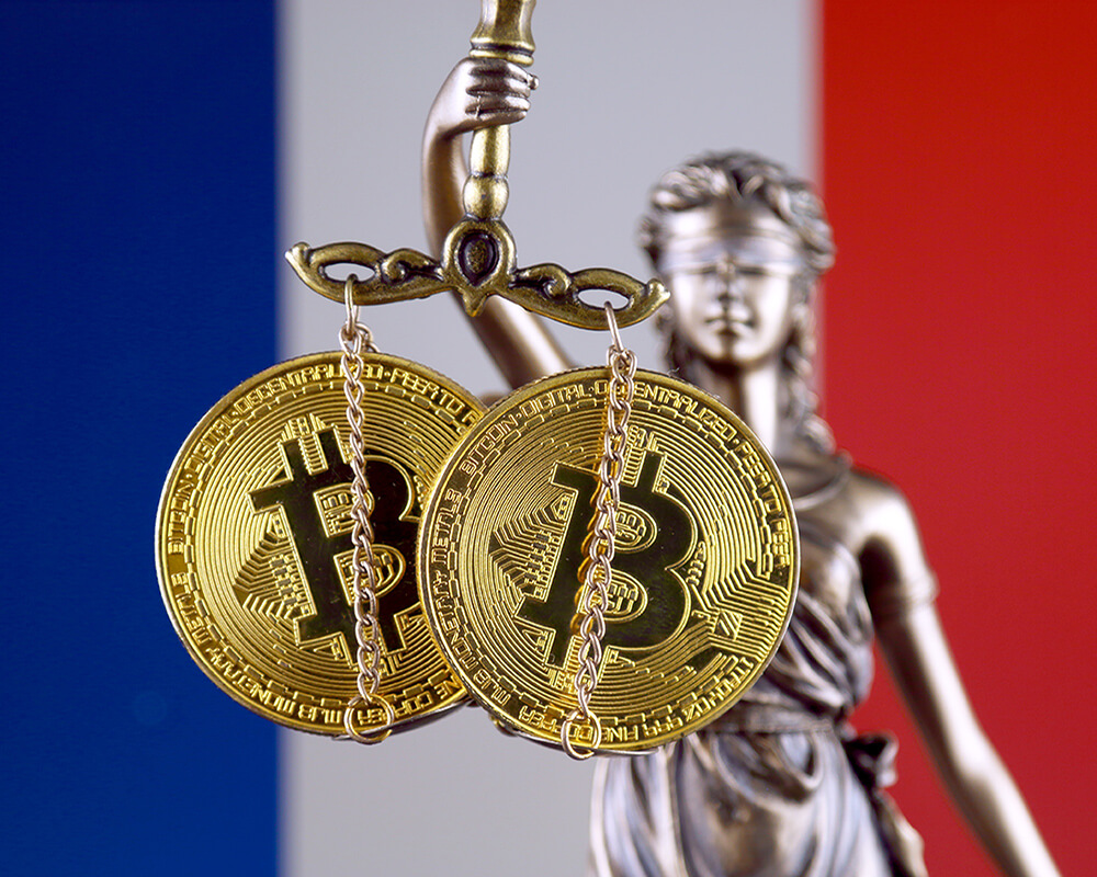 French MPs Propose Legal Framework for All 'Digital Assets' Providers, Sources Report