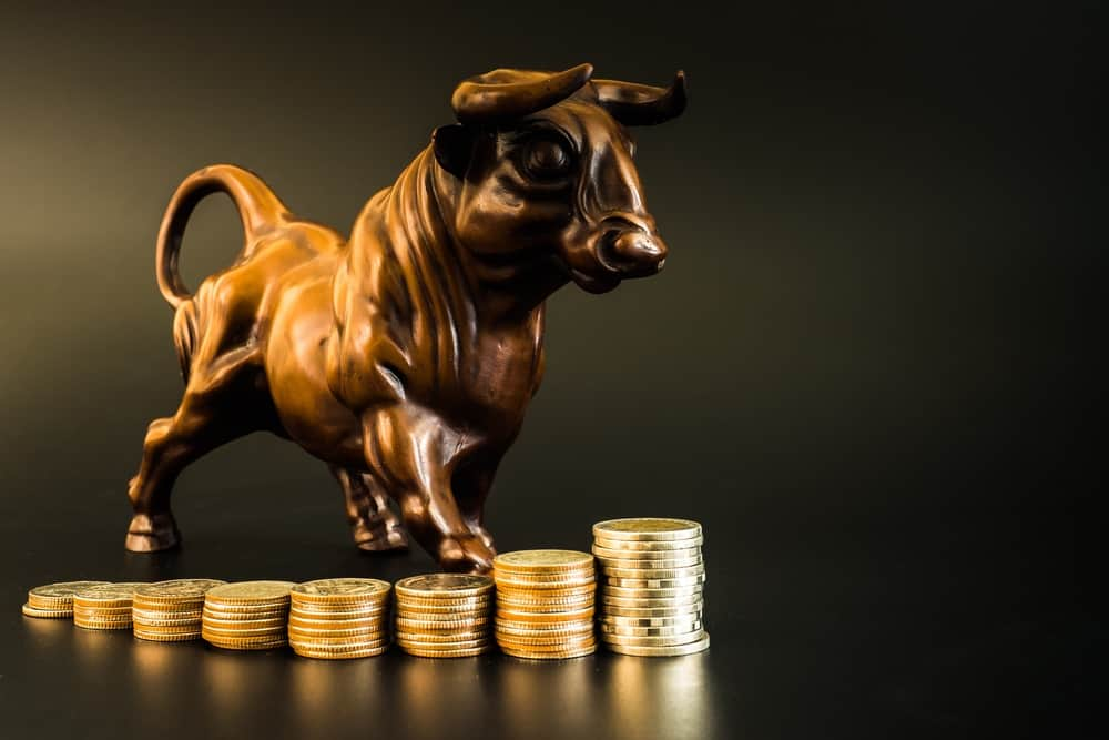 More investors HODL Bitcoin in anticipation of a 2021 BTC bull market